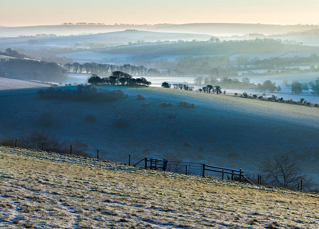 Morning Frost Gallows Hill
