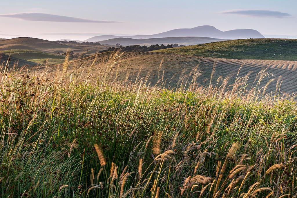 Hay Making near Balmaclellan
