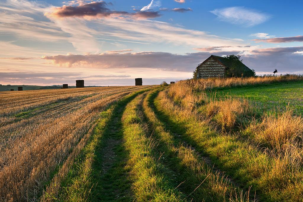 Haystacks on Marleycombe Hill