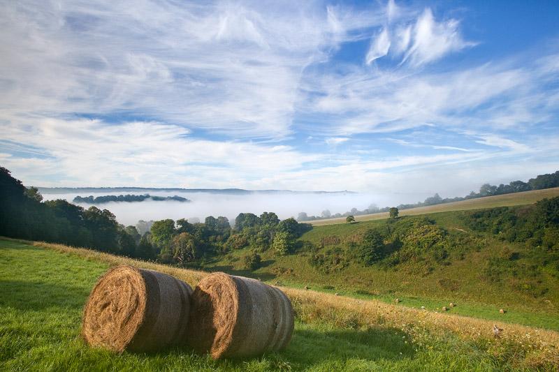 Last of the Summer Hay