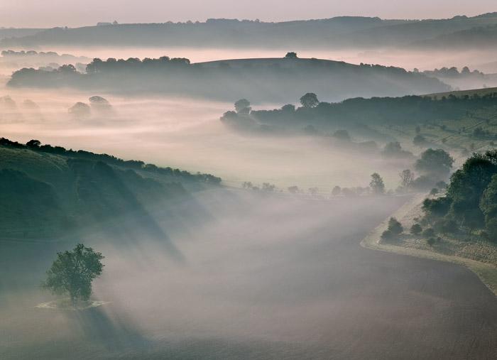 Early Morning Mist Norrington
