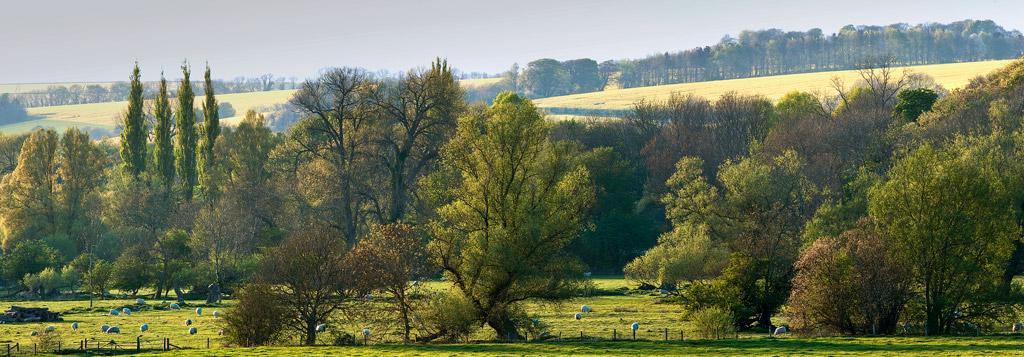 Spring-in-the-Wylye-Valley