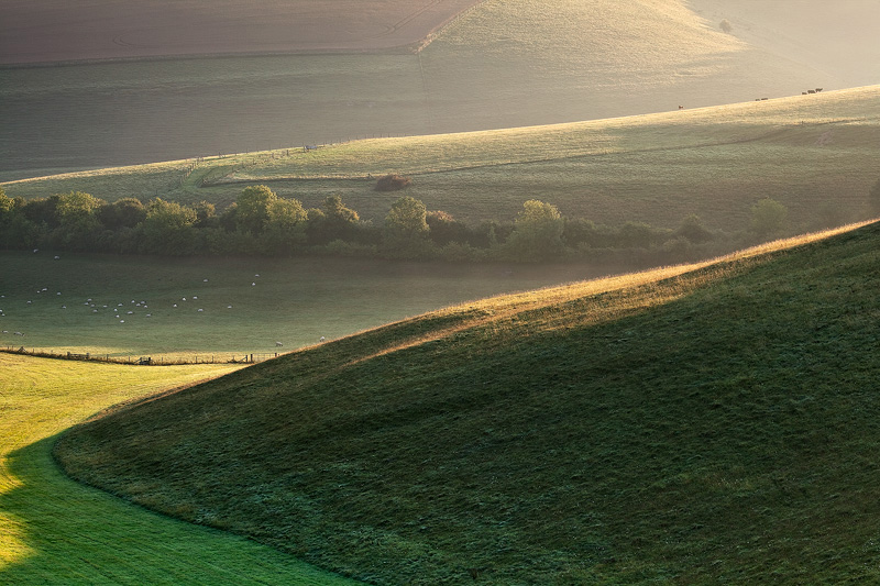 Summer Downland at Sunrise