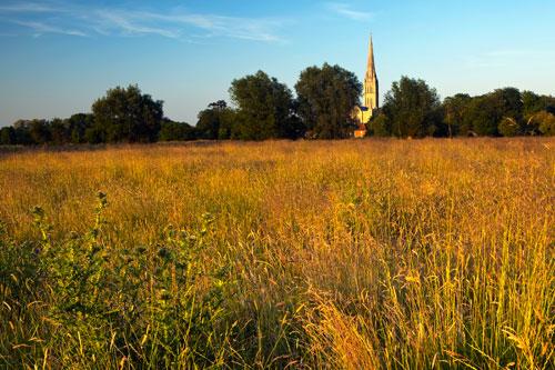 Summer evening Harnham Water Meadows