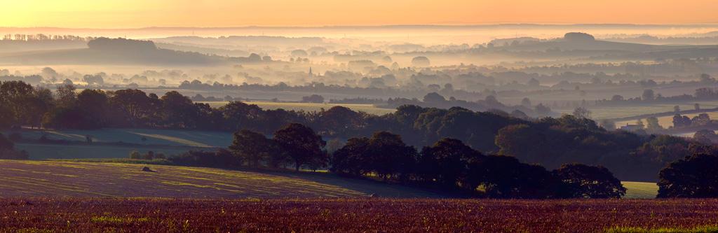 View-of-Martin-at-Dawn