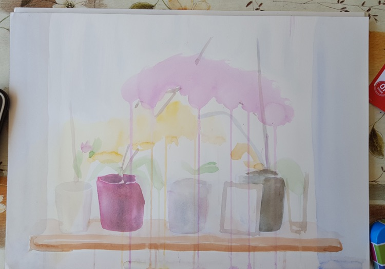 Windowsill Orchids step 3