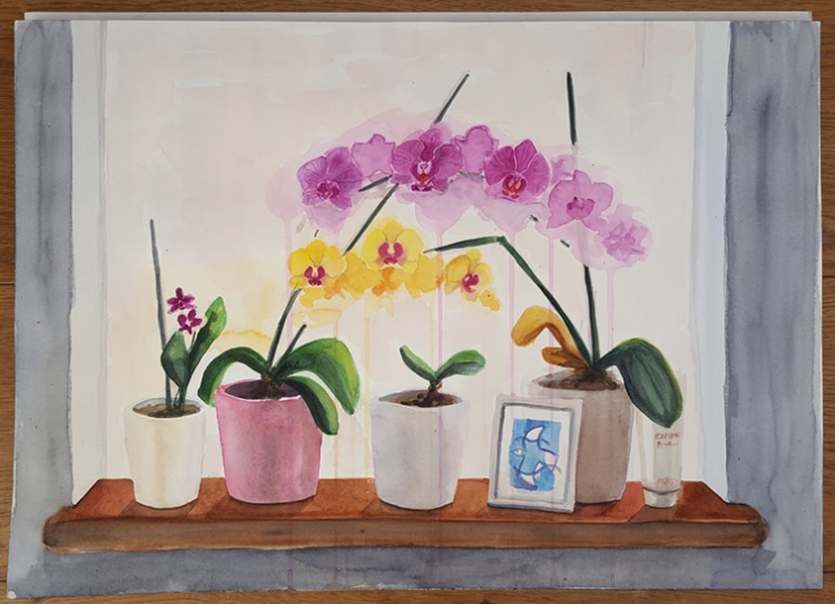 Windowsill Orchids step 4
