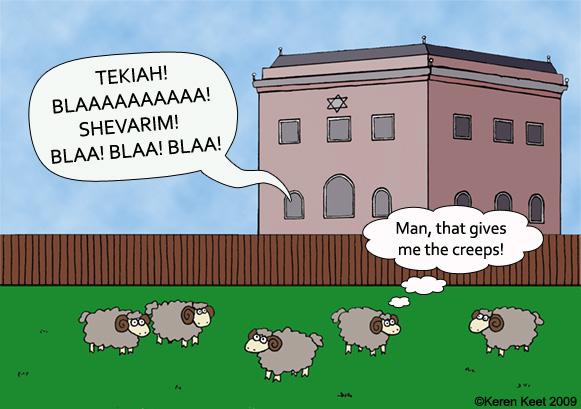 Sheep at Shul