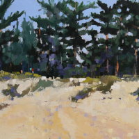 Holkham Pines