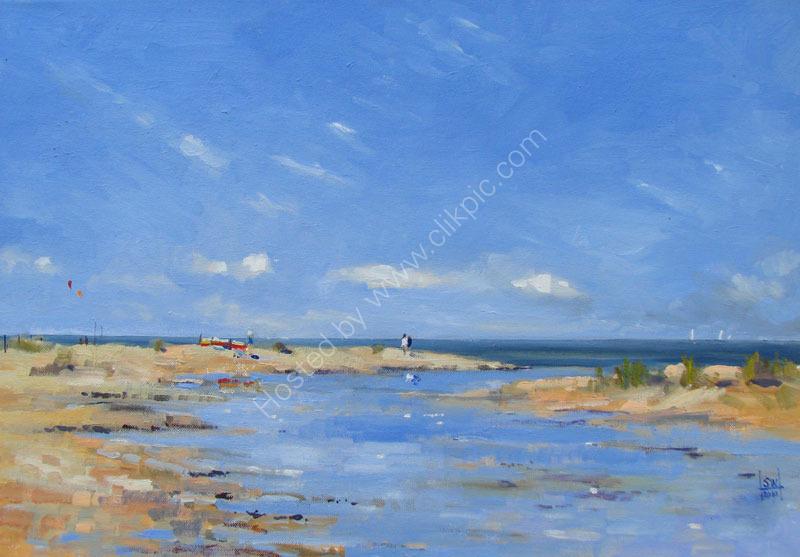 Untamed Beach