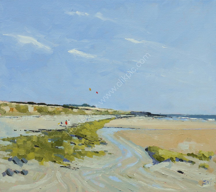 Kite flyers, Carne Beach