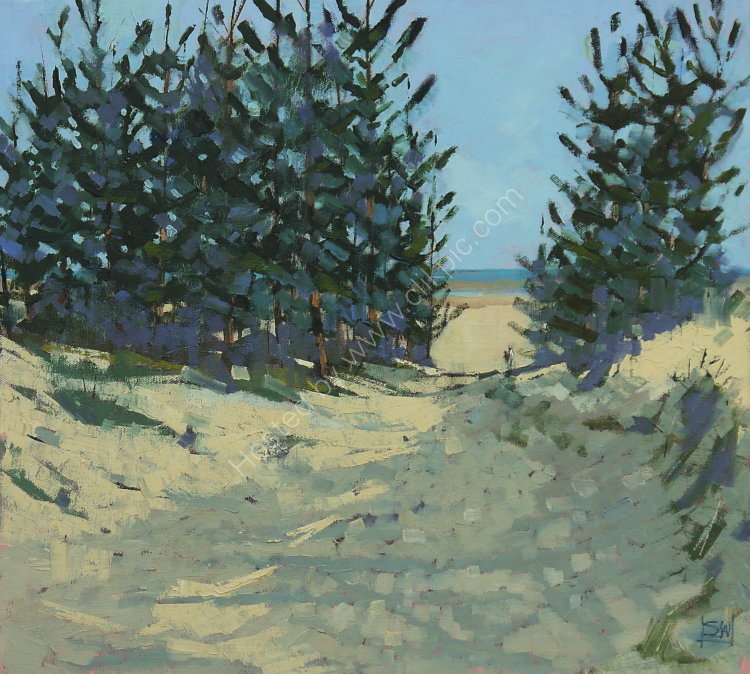 Holkham pines 6