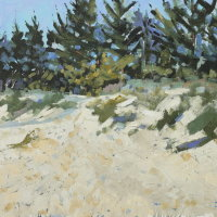Holkham pines 5