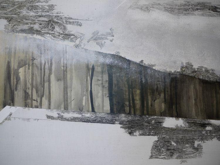 Echoes of Stoney Wood