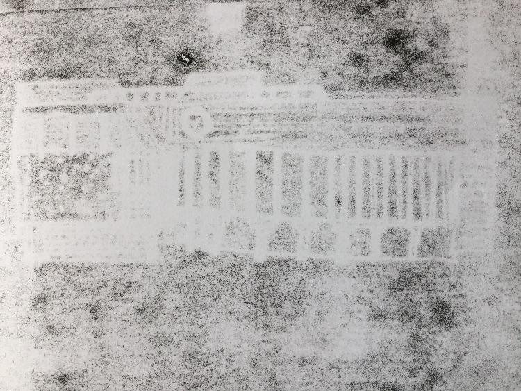 participant ghost