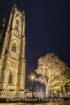 The Minster & The Tree