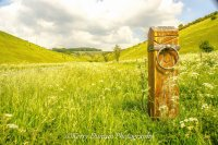 Marker To The Wolds