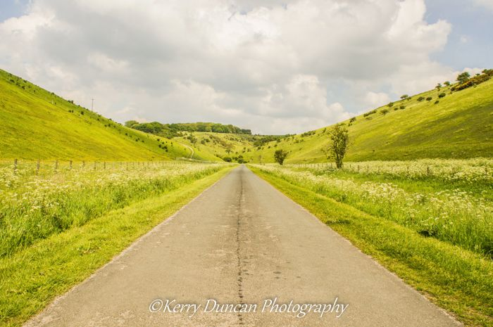 Road To The Wolds