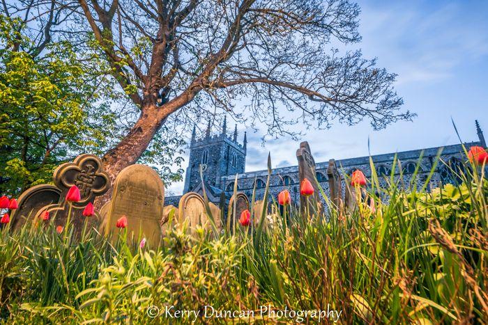 St Nicholas & The Tulips