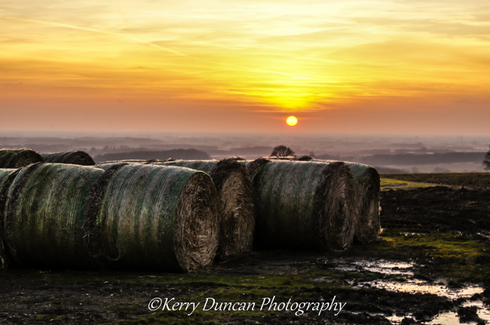 Sunset Bales