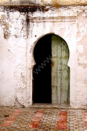 Medina Door
