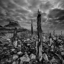 lindisfarne shore