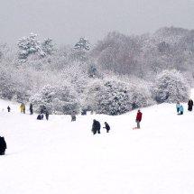 snowpeople 2010crop