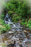 Burrator Falls 2