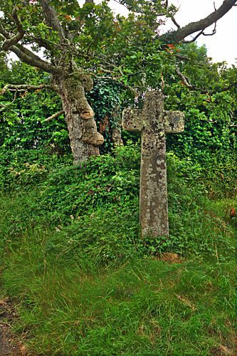 Holne Cross