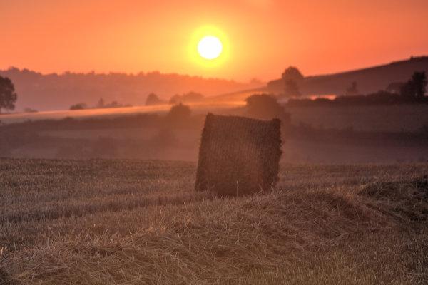 Netherton sunrise 2 p0025