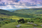 Dartmoor view p0005