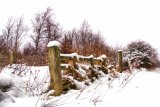 Snow fence it`s a gate