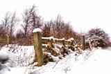 Snow fence it`s a gate