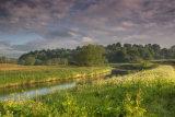 Riverbank 3