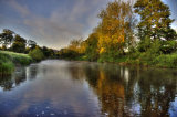Riverbank 5
