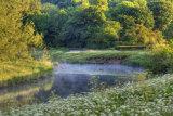 Riverbank 6