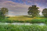 Riverbank 1