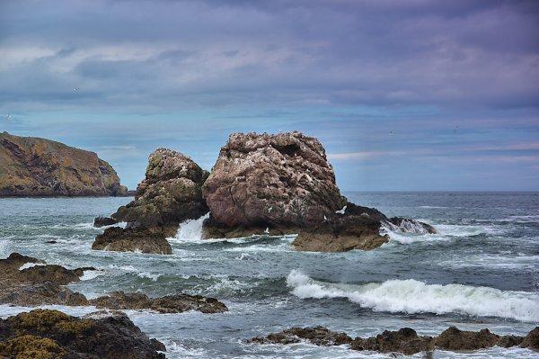 Seagull Rock 2