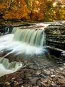 Dales-Falls
