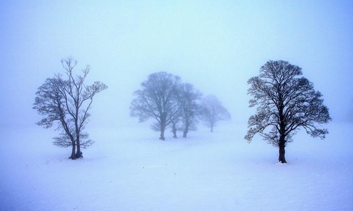 Misty Morning at Llangathen