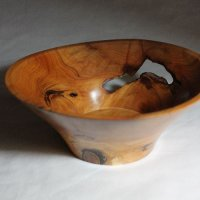 140419 Yew Pot SOLD