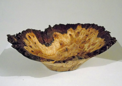Spalted Burr Oak