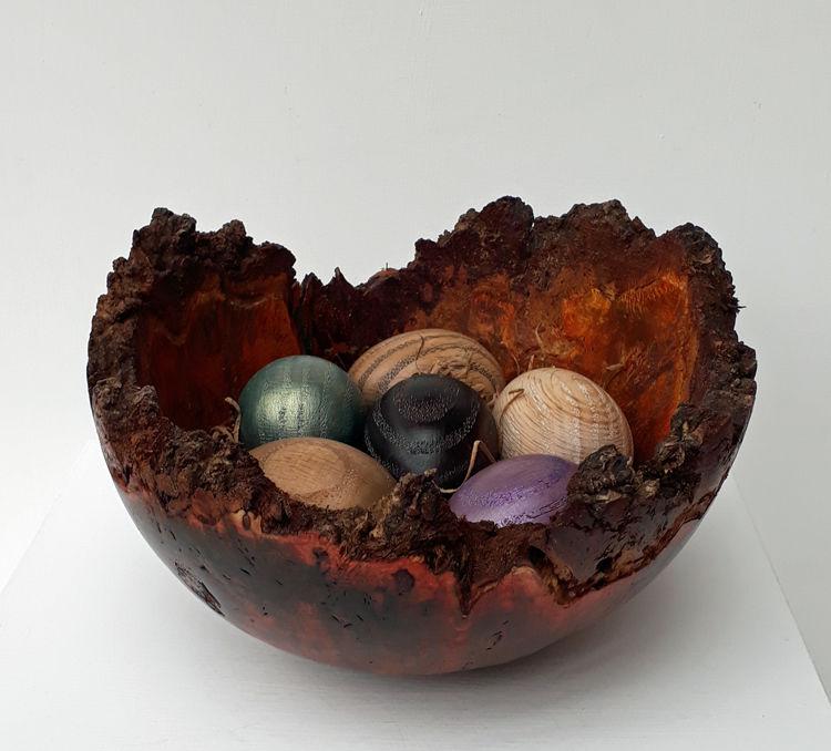200215 Nest of Hope. Stained Burr Oak