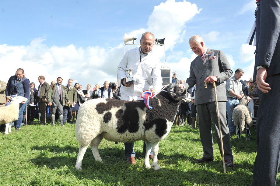 WESTMORLAND SHOW 2017   The Westmorland County Show  - one of Britain's oldest and Cumbria's largest livestock and agricultural show, Pictured: (l-R) Clive Richardson from Swarthmoor, Ulverston wins the Upland sheep Champion with Jacob sheep, trophy presented by HRH Prince Charles at The Westmorland County Show ,Thursday 14th September 2017 LEANNE BOLGER