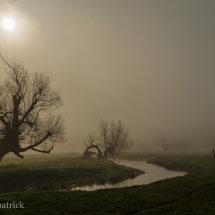 A Misty Field