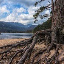 River&Loch Colour 01-7