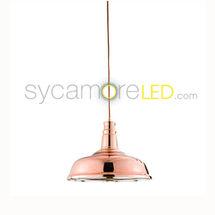rosa copper light