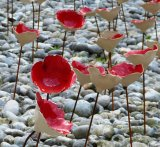 Ceramic Poppies Display
