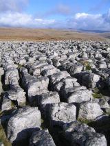 Dales Limestone Pavement