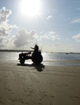 Mussel Picking by Tractor, Gold Beach